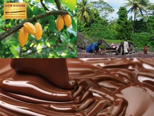 cote-divoire-7-cacao